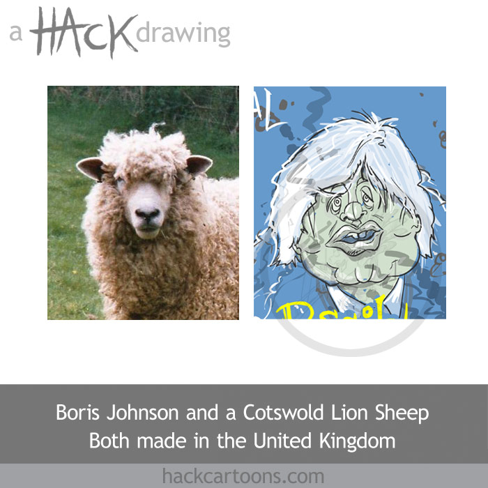 Cartoon caricature of Boris Johnson, mayor of London and a sheep. Artwork by Matt Buck Hack cartoons. Copyright and all visual rights: in the drawing (on the right as you look at it): Matt Buck. Copyright in the photograph (on the left as you look at it) Steven Mathieson